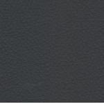 Eco-leather Lead 200 ec1